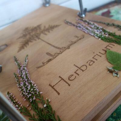 Пресс для гербария А4