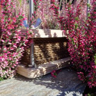 Пресс для гербария малый